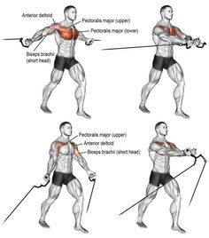 Perfecting the Pec Fly